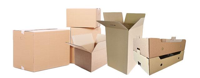 Todos los tipos de cajas